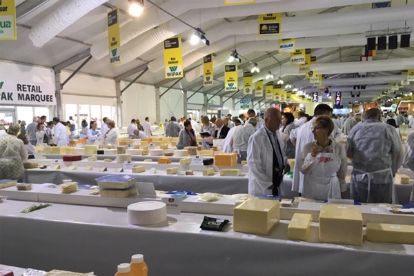 Judging cheese in a field