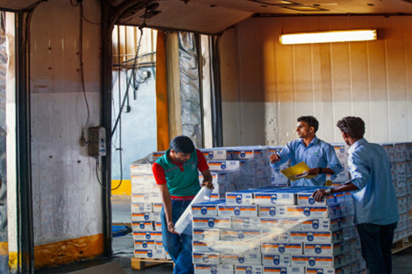 Middle East acquisition strengthens supply chain efficiency for Arla Foods