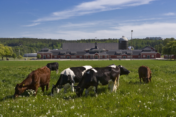 DeLaval publishes 2018 Sustainability Report