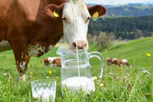 Sustainable concept for Swiss production