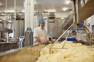 Wensleydale to increase cheese production with £17.9m investment